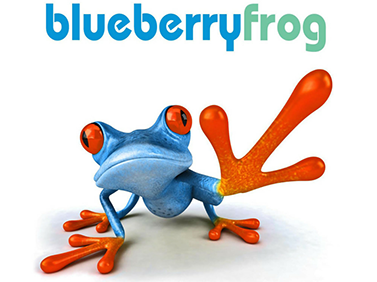 blueberry-frog-logo