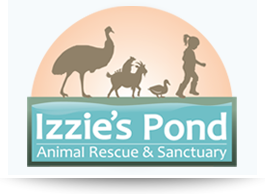 Izzie's Pond Animal Rescue & Sanctuary