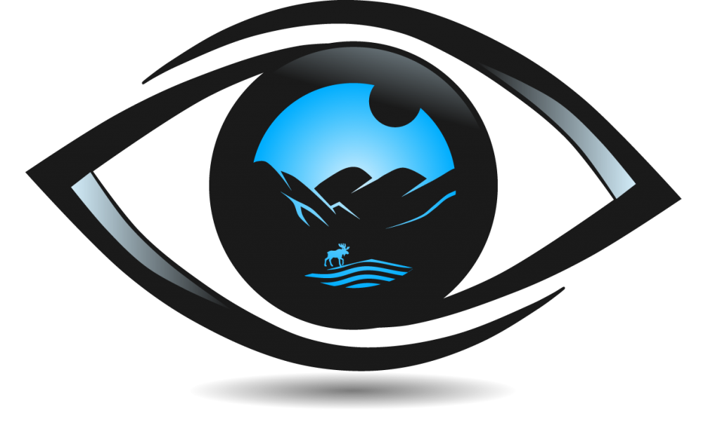 upstate eye care ;logo