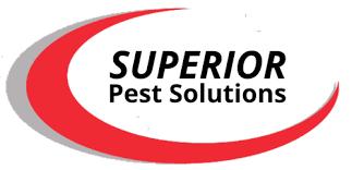 Superior Pest Solutions